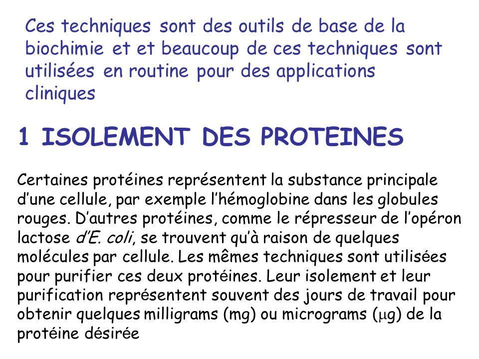 Ces techniques sont des outils de base de la biochimie et et beaucoup de ces techniques sont utilisées en routine pour des applications cliniques 1 IS
