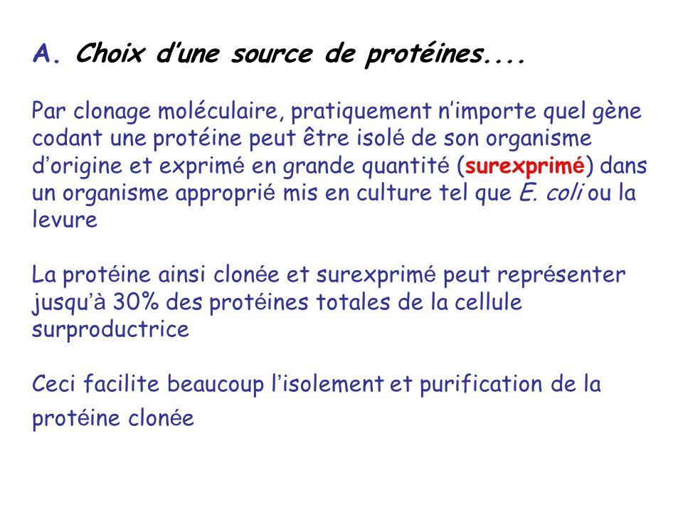 A. Choix dune source de protéines.... Par clonage moléculaire, pratiquement nimporte quel gène codant une protéine peut être isol é de son organisme d