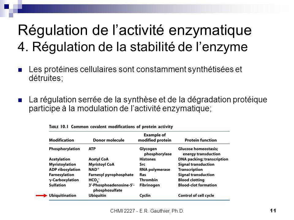 CHMI 2227 - E.R. Gauthier, Ph.D.11 Régulation de lactivité enzymatique 4. Régulation de la stabilité de lenzyme Les protéines cellulaires sont constam