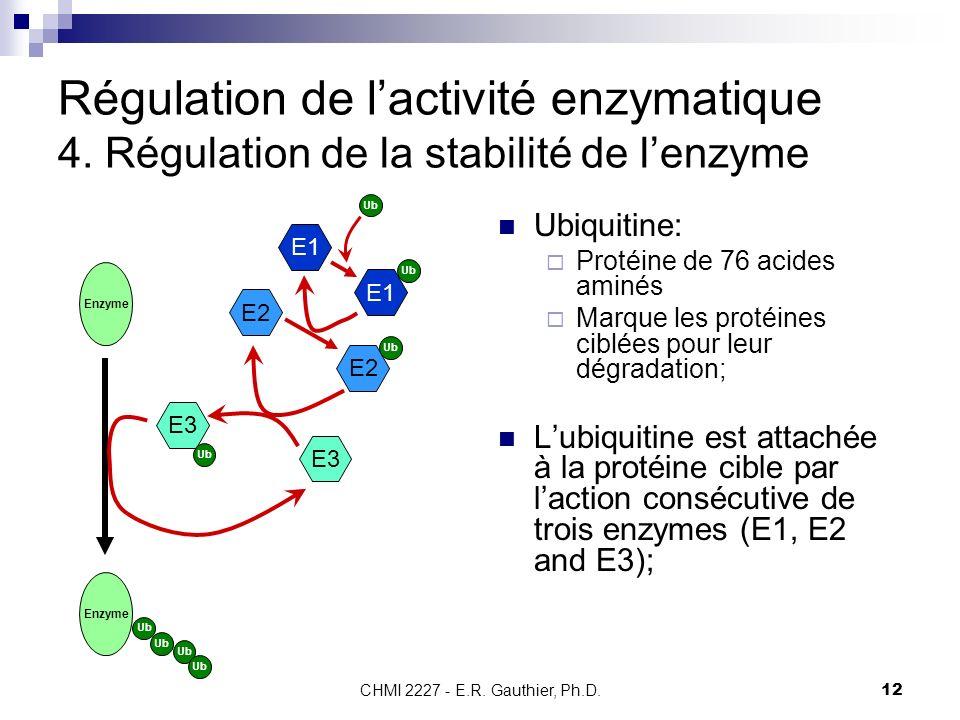 CHMI 2227 - E.R. Gauthier, Ph.D.12 Régulation de lactivité enzymatique 4. Régulation de la stabilité de lenzyme Ubiquitine: Protéine de 76 acides amin