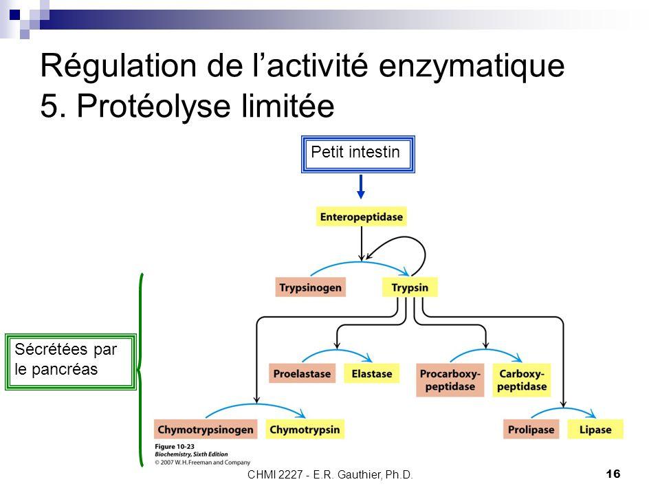 CHMI 2227 - E.R. Gauthier, Ph.D.16 Régulation de lactivité enzymatique 5. Protéolyse limitée Petit intestin Sécrétées par le pancréas