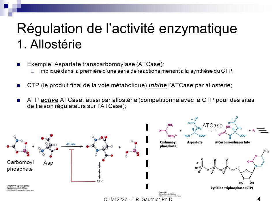 CHMI 2227 - E.R. Gauthier, Ph.D.4 Régulation de lactivité enzymatique 1. Allostérie Exemple: Aspartate transcarbomoylase (ATCase): Impliqué dans la pr