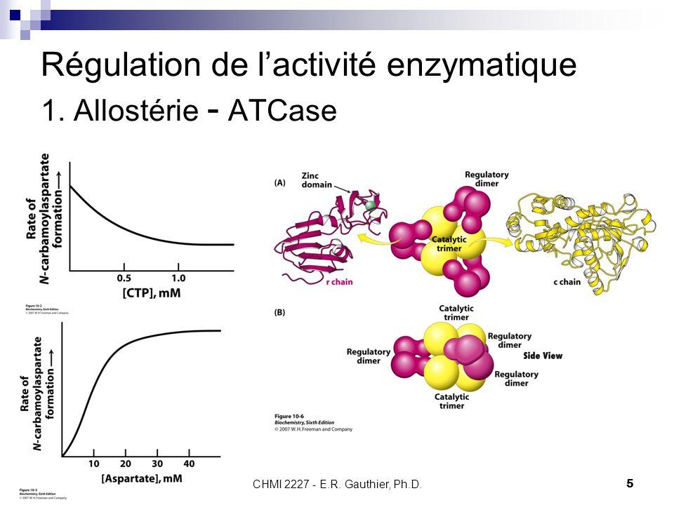 CHMI 2227 - E.R. Gauthier, Ph.D.5 Régulation de lactivité enzymatique 1. Allostérie - ATCase