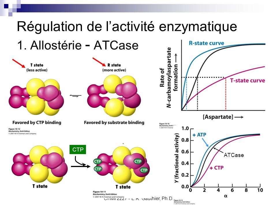 CHMI 2227 - E.R. Gauthier, Ph.D.6 Régulation de lactivité enzymatique 1. Allostérie - ATCase ATCase CTP