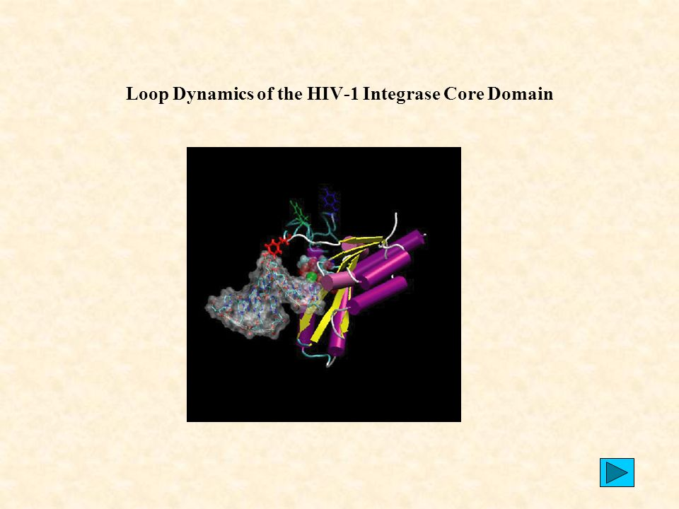 72 Loop Dynamics of the HIV-1 Integrase Core Domain