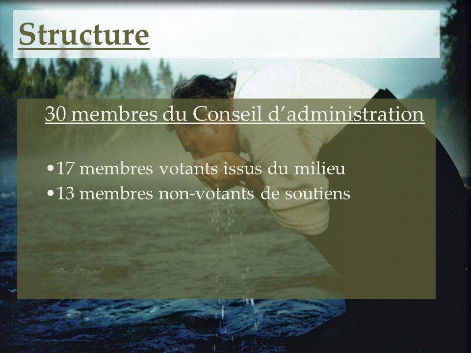 Structure 30 membres du Conseil dadministration 17 membres votants issus du milieu 13 membres non-votants de soutiens