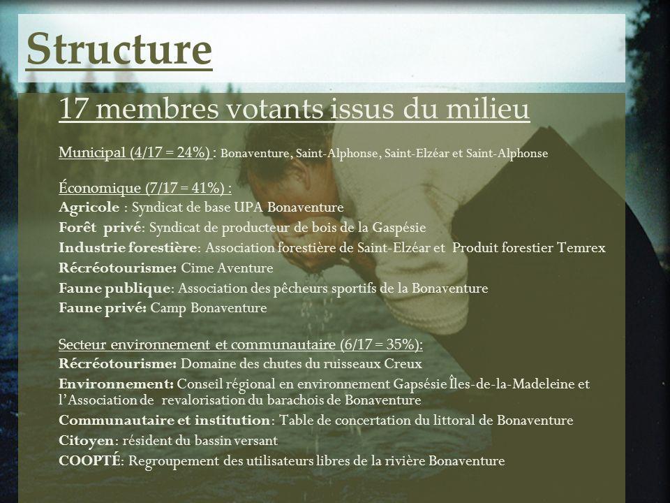Structure 17 membres votants issus du milieu Municipal (4/17 = 24%) : Bonaventure, Saint-Alphonse, Saint-Elzéar et Saint-Alphonse Économique (7/17 = 4