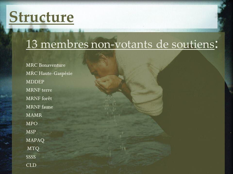 Structure 13 membres non-votants de soutiens : MRC Bonaventure MRC Haute-Gaspésie MDDEP MRNF terre MRNF forêt MRNF faune MAMR MPO MSP MAPAQ MTQ SSSS C