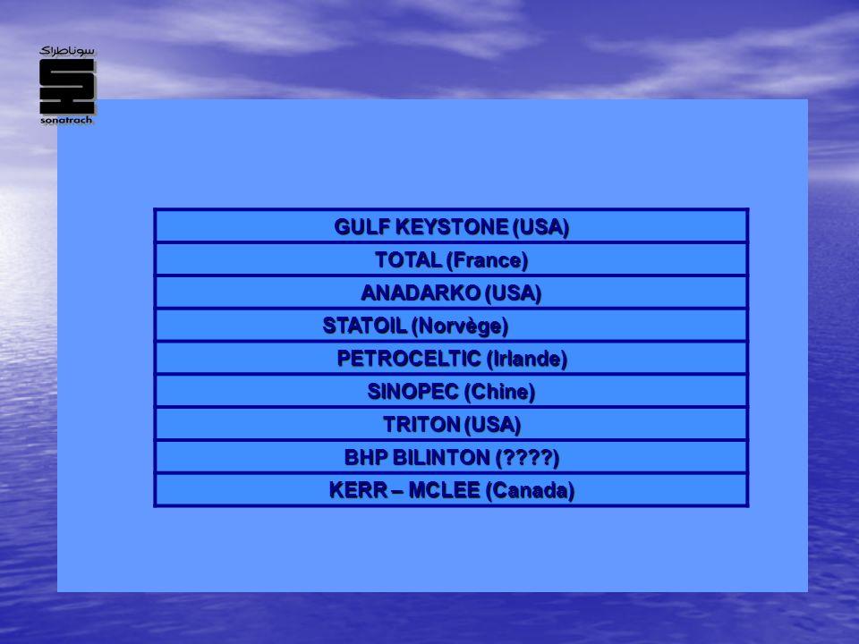 GULF KEYSTONE (USA) TOTAL (France) ANADARKO (USA) STATOIL (Norvège) PETROCELTIC (Irlande) SINOPEC (Chine) TRITON (USA) BHP BILINTON (????) KERR – MCLE