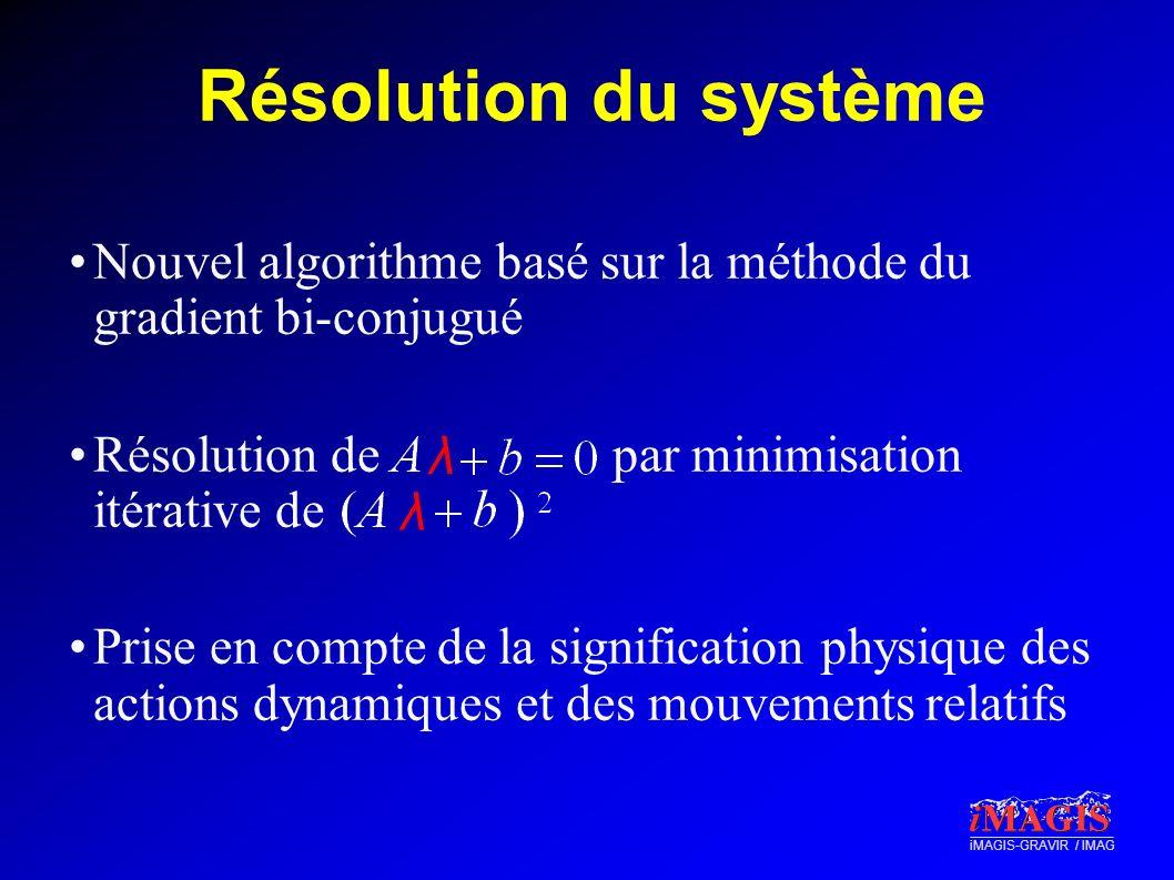 iMAGIS-GRAVIR / IMAG Résolution du système Nouvel algorithme basé sur la méthode du gradient bi-conjugué Résolution de par minimisation itérative de P