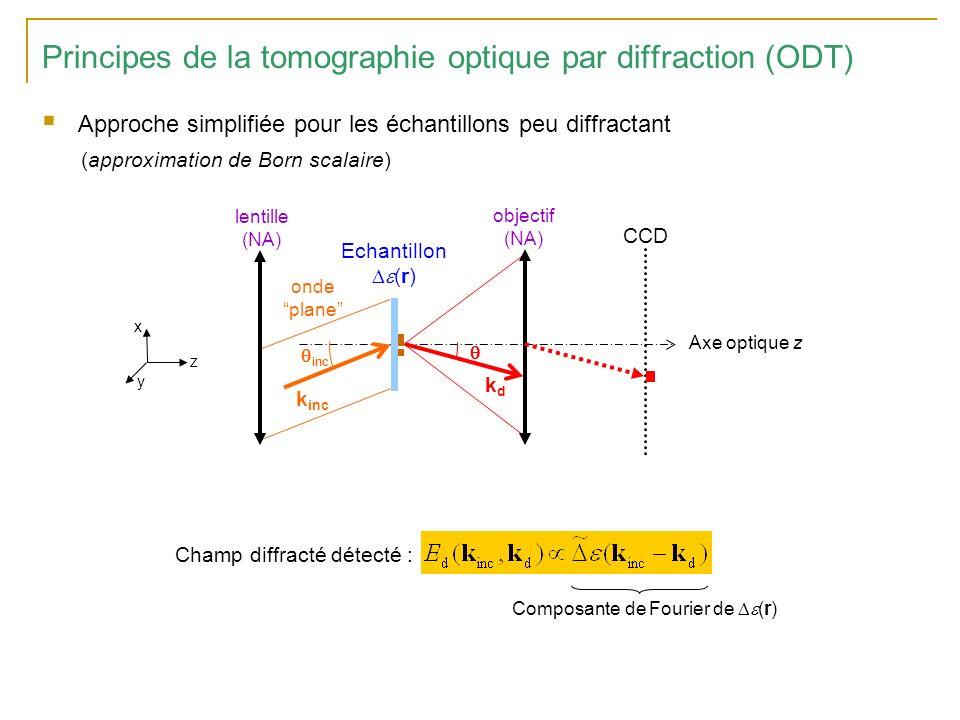 Principes de la tomographie optique par diffraction (ODT) Concept de synthèse douverture Espace de Fourier (k x, k y ) résolution transverse kyky kxkx NA de lobjectif k inc3// k inc4// k inc2// k inc1// La combinaison des différents hologrammes synthétise une ouverture plus large que louverture numérique de lobjectif Domaine de fréquences spatiales de (r) accessible avec lincidence n°3