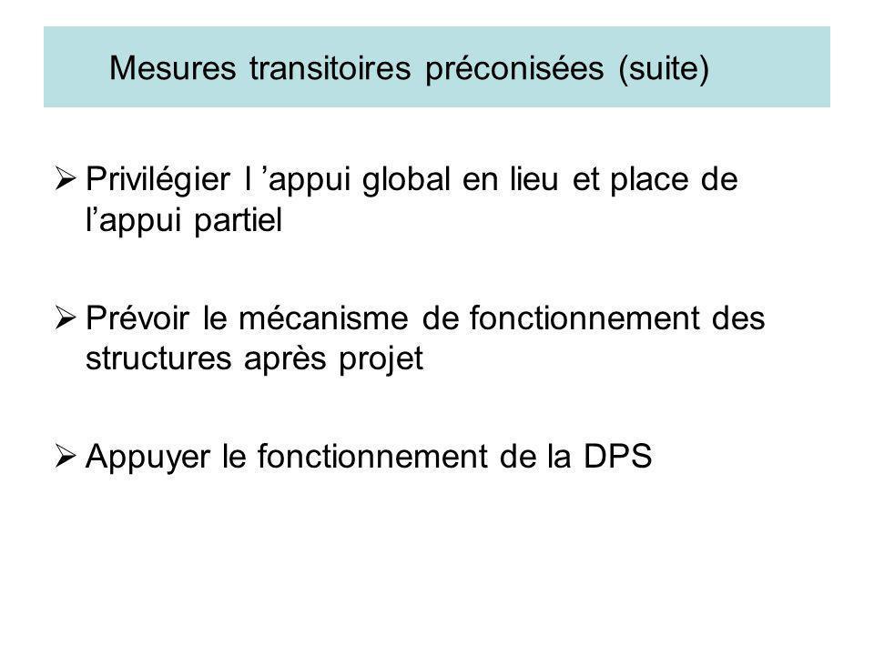Mesures transitoires préconisées (suite) Privilégier l appui global en lieu et place de lappui partiel Prévoir le mécanisme de fonctionnement des stru