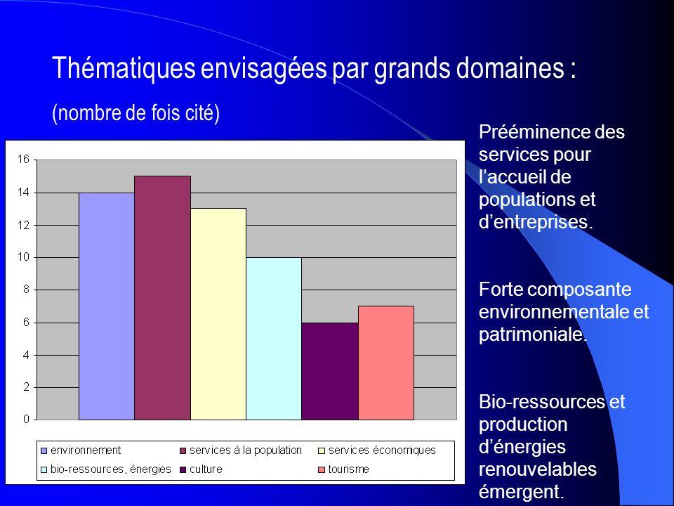 Thématiques envisagées par grands domaines : (nombre de fois cité) Prééminence des services pour laccueil de populations et dentreprises.