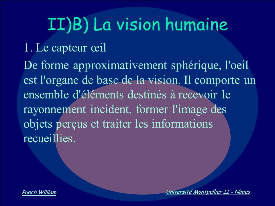 Vision par Ordinateur Puech William Université Montpellier II - Nîmes II)B) La vision humaine 1. Le capteur œil De forme approximativement sphérique,