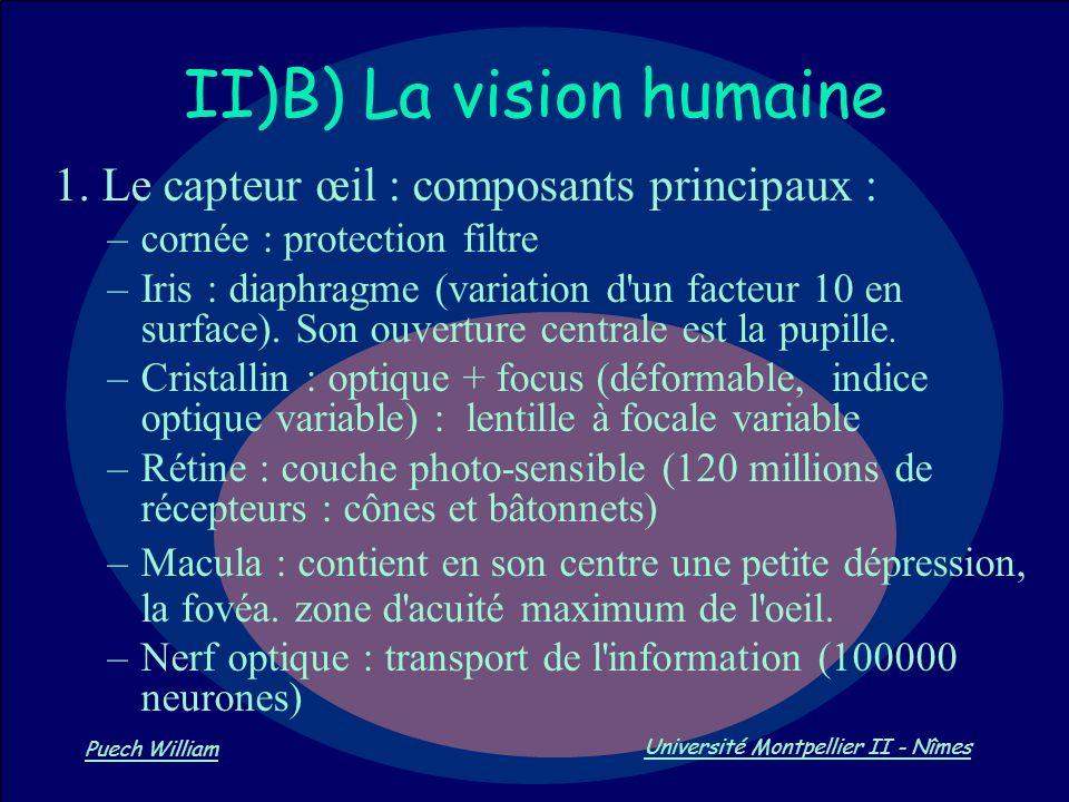 Vision par Ordinateur Puech William Université Montpellier II - Nîmes II)B) La vision humaine 1. Le capteur œil : composants principaux : –cornée : pr
