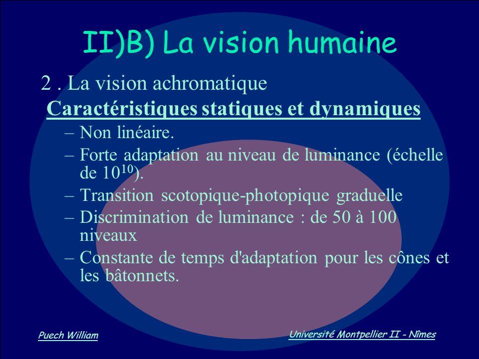Vision par Ordinateur Puech William Université Montpellier II - Nîmes II)B) La vision humaine 2. La vision achromatique Caractéristiques statiques et