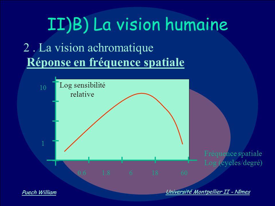 Vision par Ordinateur Puech William Université Montpellier II - Nîmes II)B) La vision humaine 2. La vision achromatique Réponse en fréquence spatiale