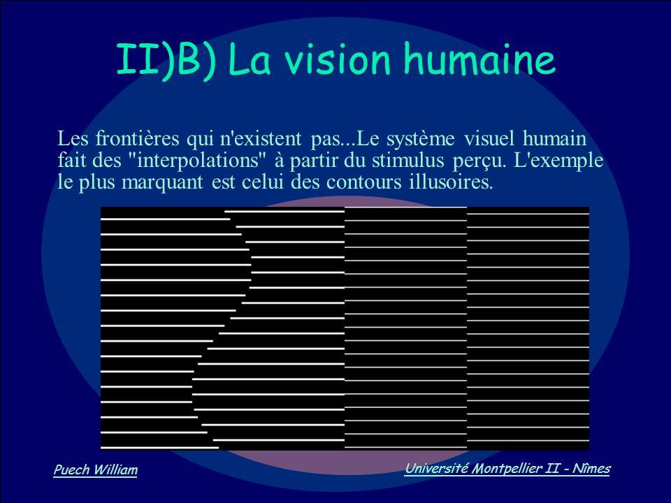 Vision par Ordinateur Puech William Université Montpellier II - Nîmes II)B) La vision humaine Les frontières qui n'existent pas...Le système visuel hu