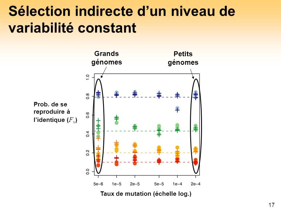 17 Sélection indirecte dun niveau de variabilité constant Taux de mutation (échelle log.) Grands génomes Petits génomes Prob. de se reproduire à liden