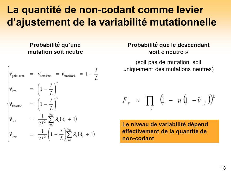 18 La quantité de non-codant comme levier dajustement de la variabilité mutationnelle Le niveau de variabilité dépend effectivement de la quantité de