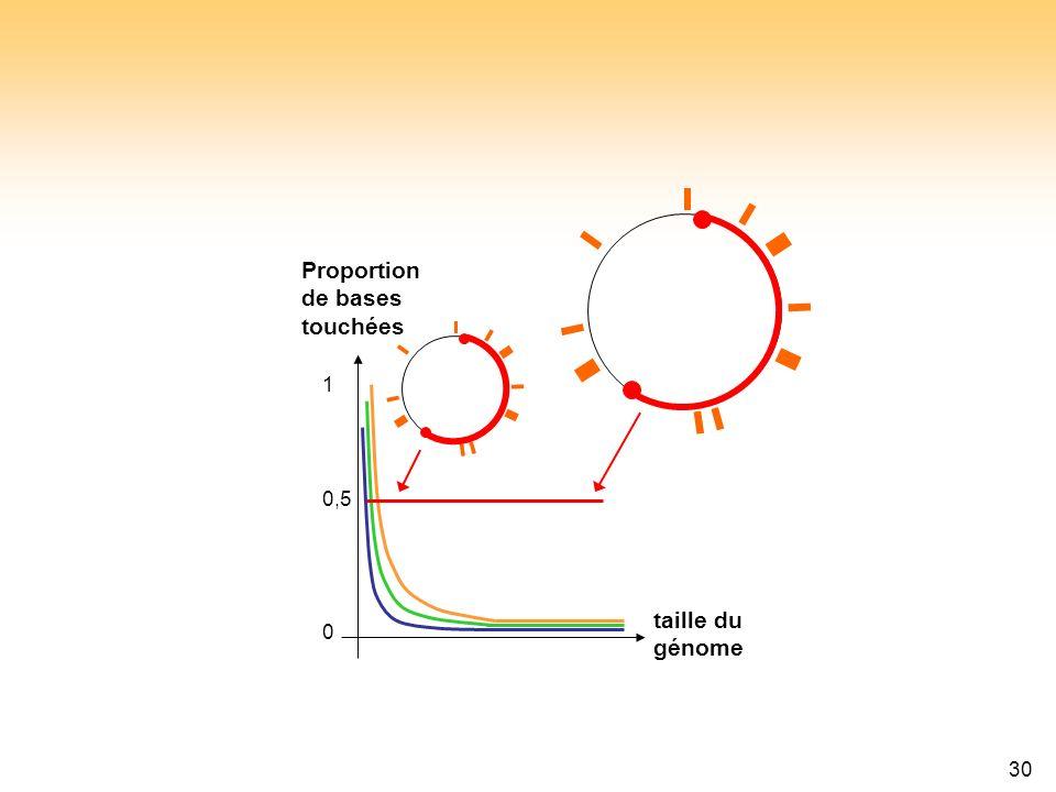 30 taille du génome Proportion de bases touchées 0,5 0 1