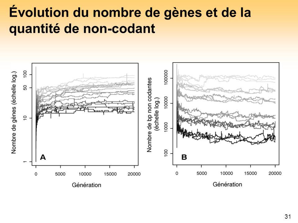 31 Évolution du nombre de gènes et de la quantité de non-codant
