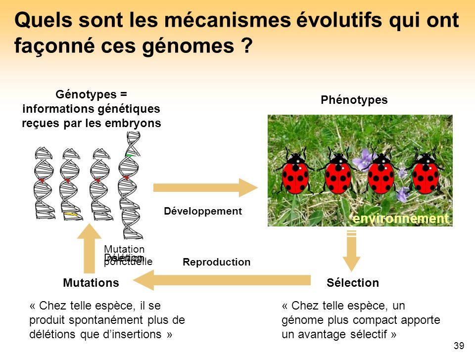 39 environnement Quels sont les mécanismes évolutifs qui ont façonné ces génomes ? Génotypes = informations génétiques reçues par les embryons Phénoty