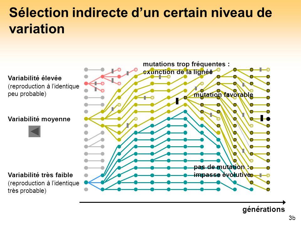 43 Sélection indirecte dun certain niveau de variation mutations trop fréquentes : extinction de la lignée mutation favorable pas de mutation : impass