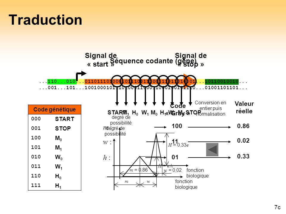 45 Traduction Signal de « start » Signal de « stop » Séquence codante (gène)...110...010...011011101000101110011100111011010001...10110010010......001