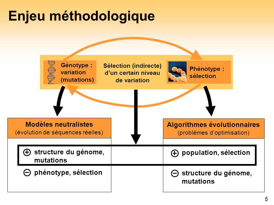5 Enjeu méthodologique Génotype : variation (mutations) Phénotype : sélection Sélection (indirecte) dun certain niveau de variation Algorithmes évolut