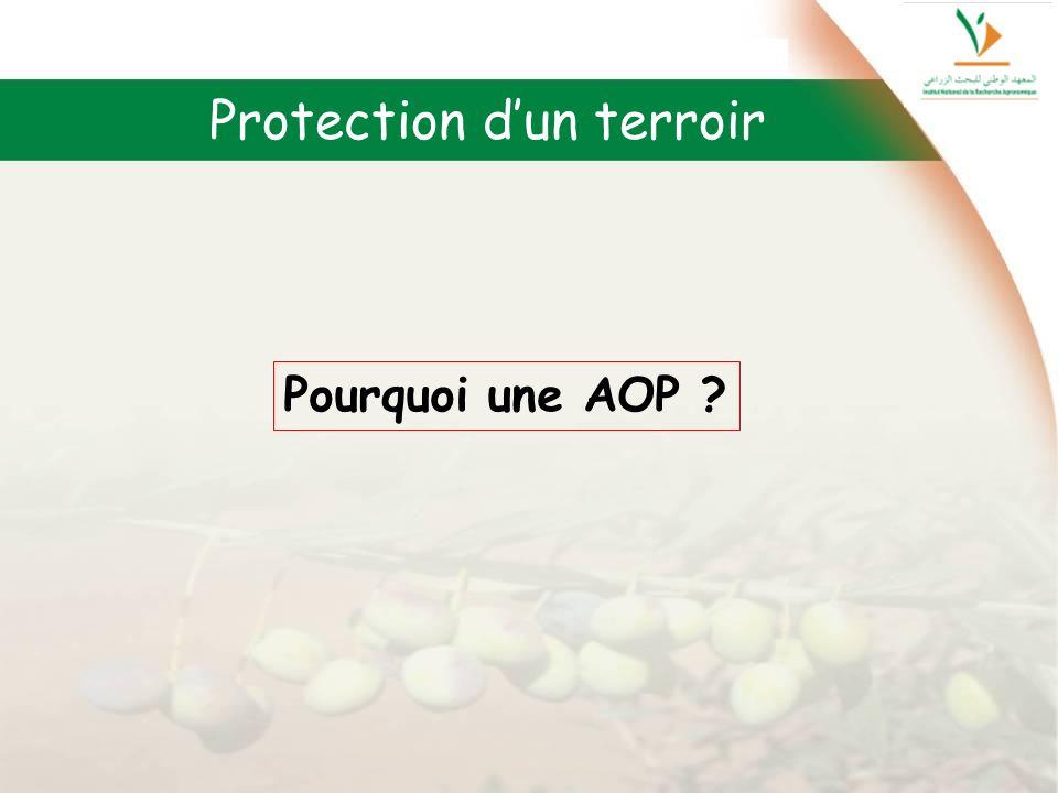 Pourquoi une AOP ? Protection dun terroir
