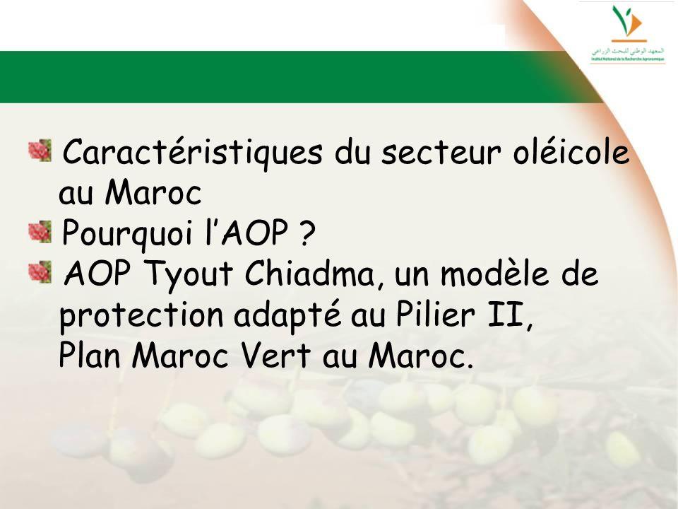 Caractéristiques du secteur oléicole au Maroc Pourquoi lAOP ? AOP Tyout Chiadma, un modèle de protection adapté au Pilier II, Plan Maroc Vert au Maroc