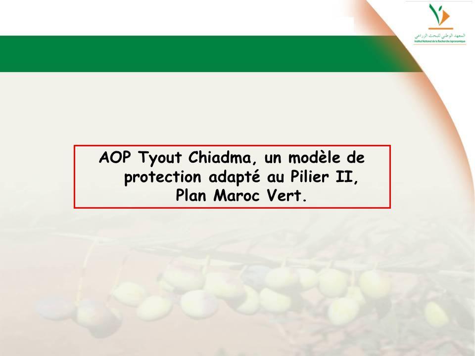AOP Tyout Chiadma, un modèle de protection adapté au Pilier II, Plan Maroc Vert.