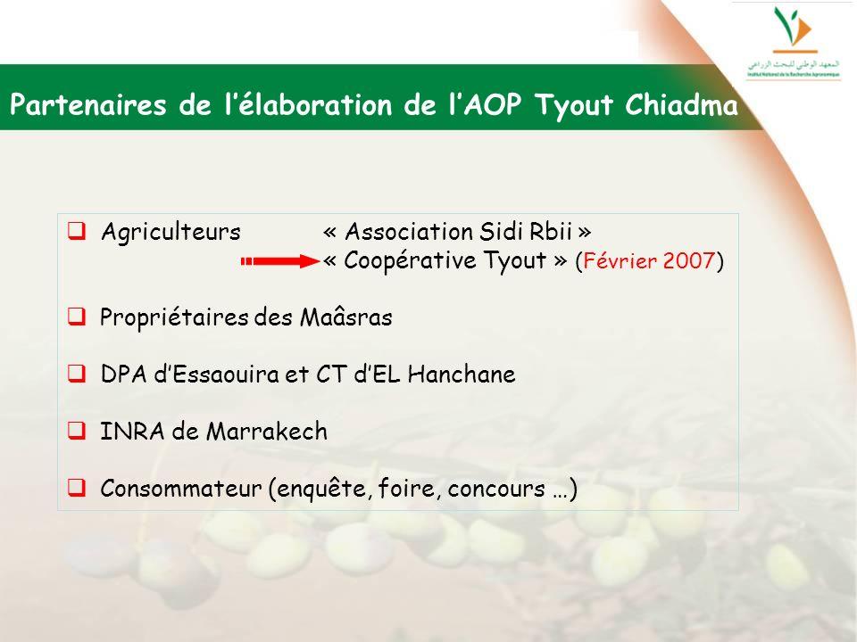 Partenaires de lélaboration de lAOP Tyout Chiadma Agriculteurs « Association Sidi Rbii » « Coopérative Tyout » (Février 2007) Propriétaires des Maâsra