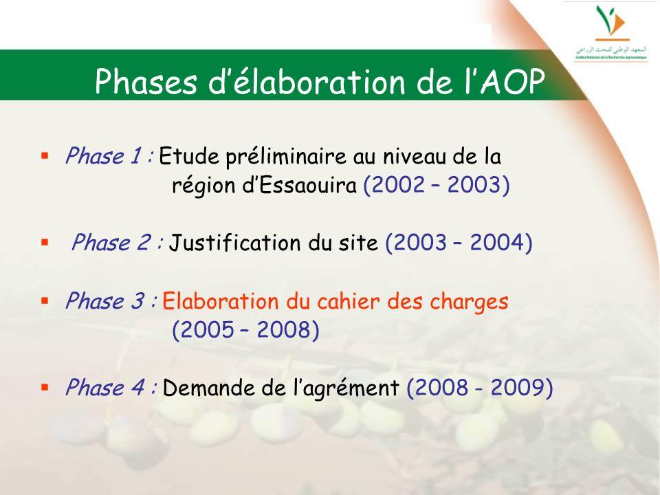 Phase 1 : Etude préliminaire au niveau de la région dEssaouira (2002 – 2003) Phase 2 : Justification du site (2003 – 2004) Phase 3 : Elaboration du ca