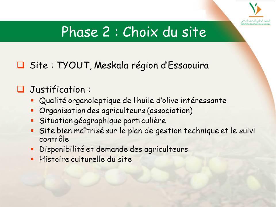 Phase 2 : Choix du site Site : TYOUT, Meskala région dEssaouira Justification : Qualité organoleptique de lhuile dolive intéressante Organisation des