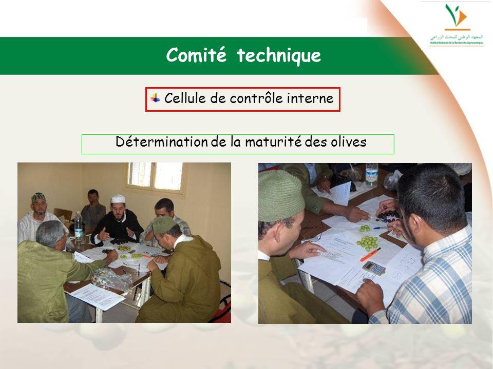 Détermination de la maturité des olives Comité technique Cellule de contrôle interne