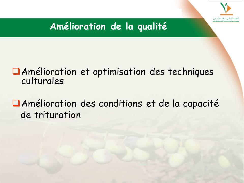 Amélioration de la qualité Amélioration et optimisation des techniques culturales Amélioration des conditions et de la capacité de trituration