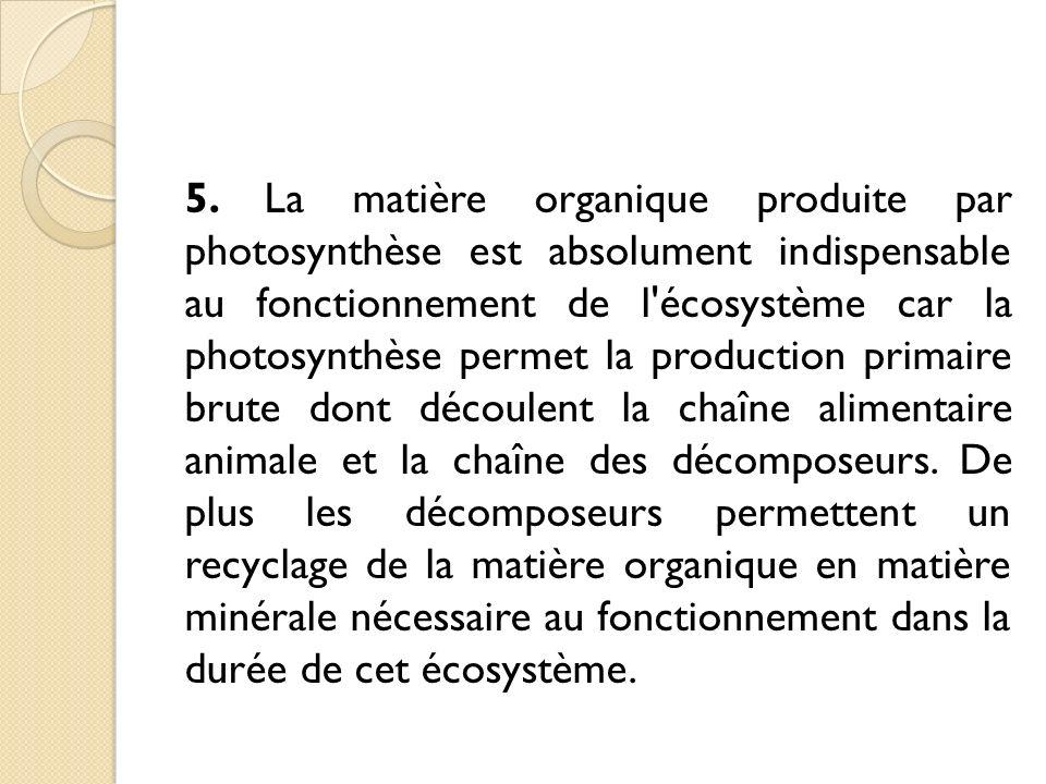 5. La matière organique produite par photosynthèse est absolument indispensable au fonctionnement de l'écosystème car la photosynthèse permet la produ