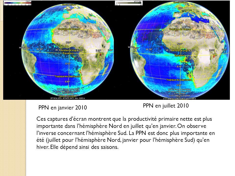 PPN en janvier 2010 PPN en juillet 2010 Ces captures décran montrent que la productivité primaire nette est plus importante dans lhémisphère Nord en juillet quen janvier.