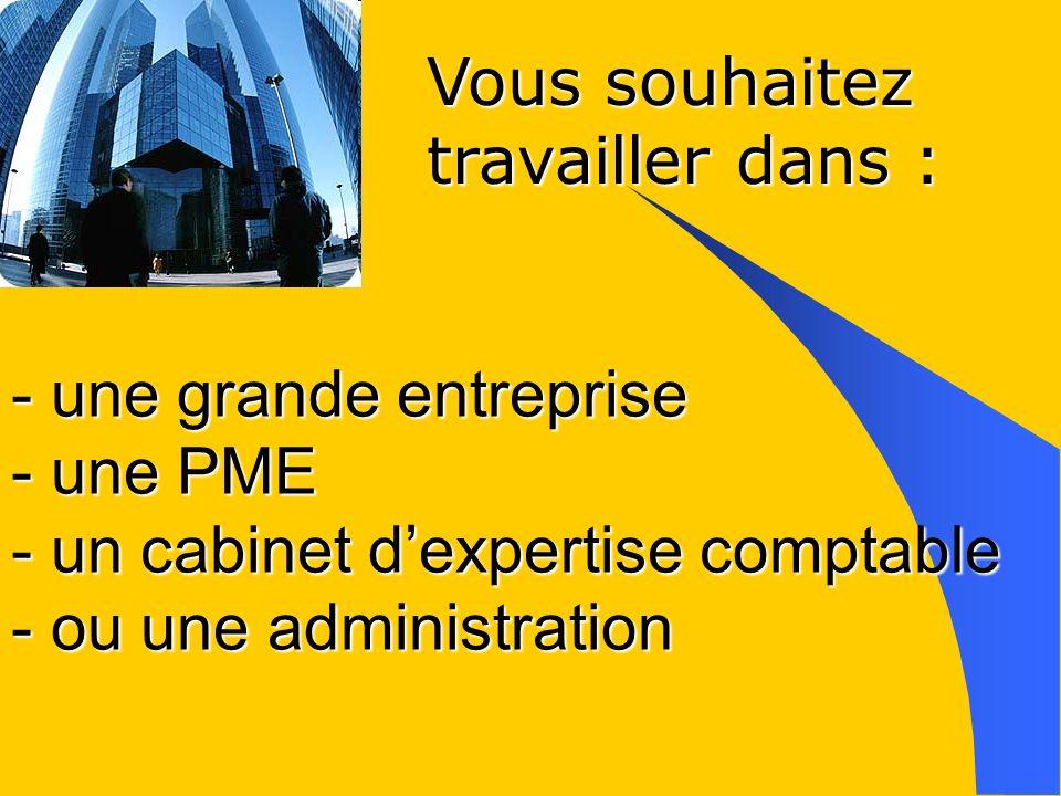 - une grande entreprise - une PME - un cabinet dexpertise comptable - ou une administration Vous souhaitez travailler dans :