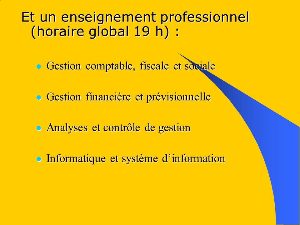 Et un enseignement professionnel (horaire global 19 h) : Gestion comptable, fiscale et sociale Gestion financière et prévisionnelle Gestion financière et prévisionnelle Analyses et contrôle de gestion Analyses et contrôle de gestion Informatique et système dinformation Informatique et système dinformation