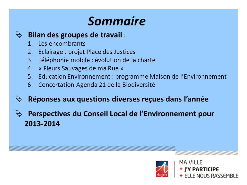 Sommaire Bilan des groupes de travail : 1. Les encombrants 2. Eclairage : projet Place des Justices 3. Téléphonie mobile : évolution de la charte 4. «
