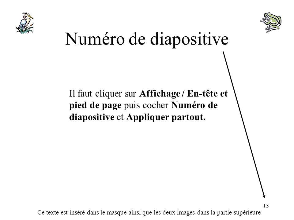 Ce texte est inséré dans le masque ainsi que les deux images dans la partie supérieure 13 Numéro de diapositive Il faut cliquer sur Affichage / En-têt