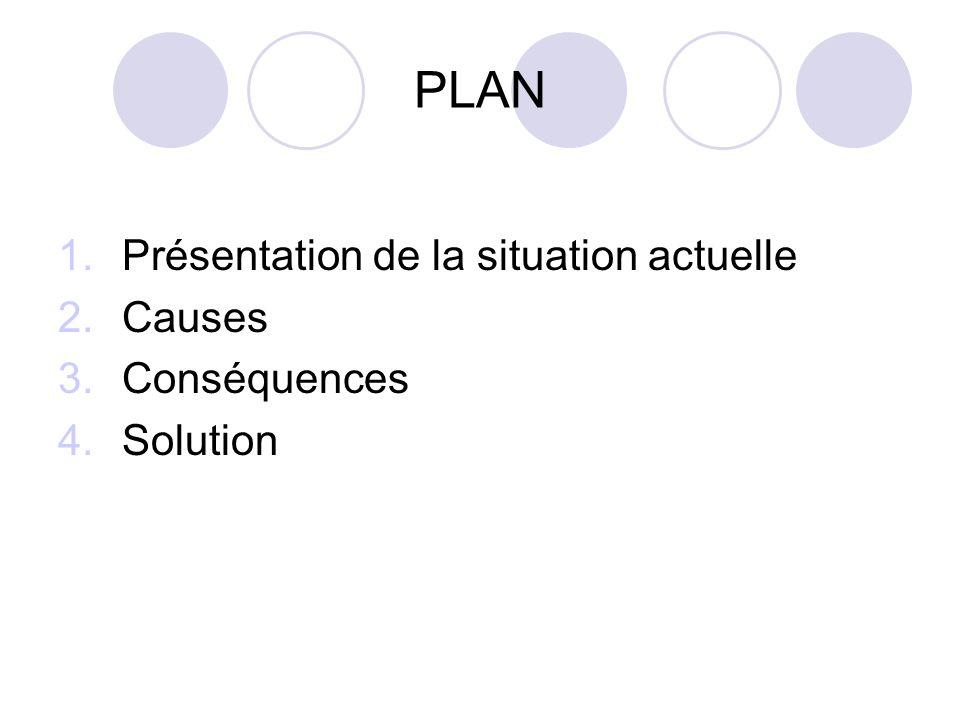 PLAN 1.Présentation de la situation actuelle 2.Causes 3.Conséquences 4.Solution