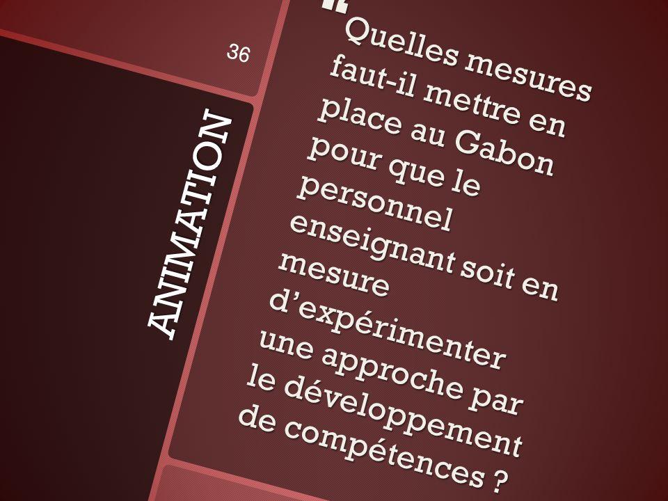ANIMATION Quelles mesures faut-il mettre en place au Gabon pour que le personnel enseignant soit en mesure dexpérimenter une approche par le développement de compétences .