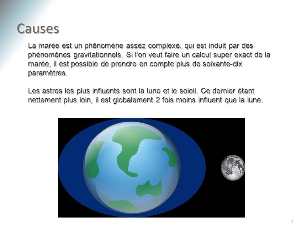 Causes 3 La marée est un phénomène assez complexe, qui est induit par des phénomènes gravitationnels. Si l'on veut faire un calcul super exact de la m