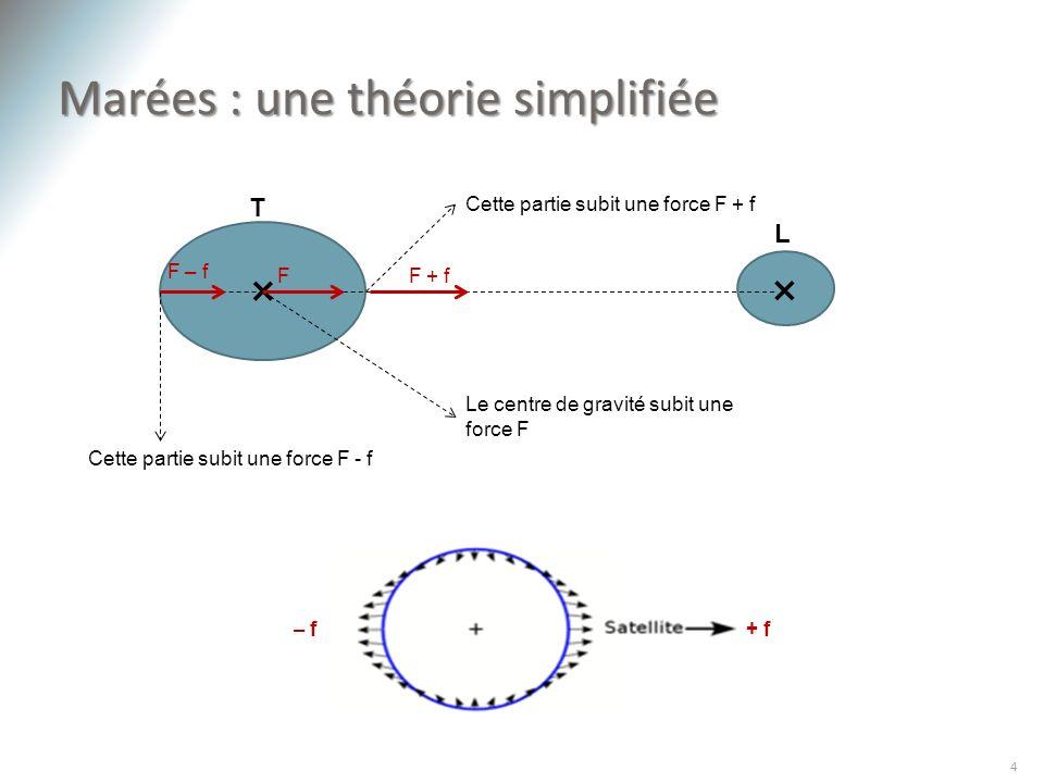 Marées : une théorie simplifiée 4 × × Cette partie subit une force F + f Cette partie subit une force F - f Le centre de gravité subit une force F T L
