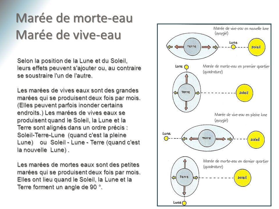 Marée de morte-eau Marée de vive-eau 8 Selon la position de la Lune et du Soleil, leurs effets peuvent s'ajouter ou, au contraire se soustraire l'un d