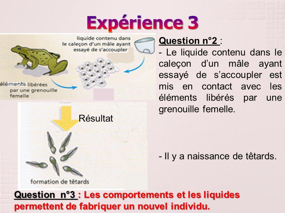 Question n°2 : - Le liquide contenu dans le caleçon dun mâle ayant essayé de saccoupler est mis en contact avec les éléments libérés par une grenouill